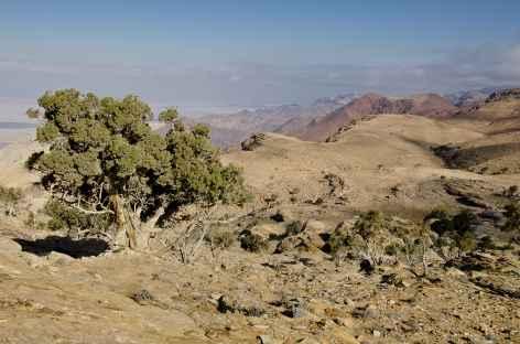 Vers le Mont Garoun - Jordanie -