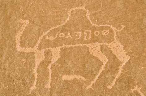 Gravures rupestres dans le désert du Wadi Rum - Jordanie -