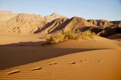 Vers notre campement du Wadi Araba - Jordanie -