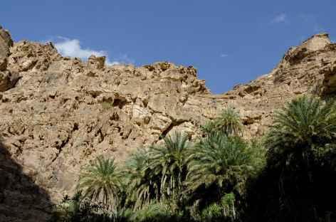 Marche dans le Wadi Gweir  - Jordanie -