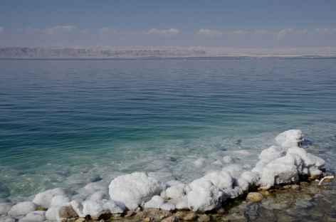 Concrétions de sel, Mer Morte - Jordanie -