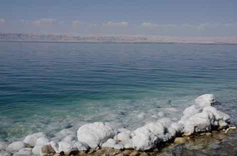 Mer Morte et ses concrétions de sel - Jordanie -