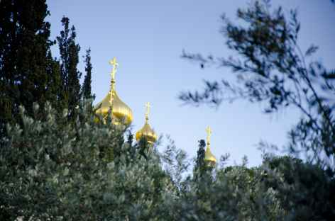 Sur les pentes du Mont des Oliviers - Israël -