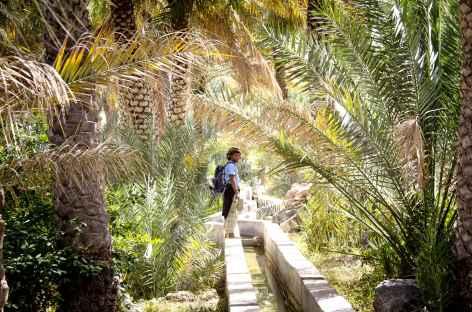Randonnée le long du falaj - Oman -
