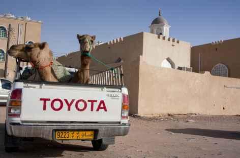 Aux portes du désert du Wahiba - Oman -