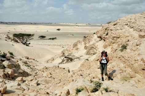 Randonnée dans le désert Blanc - Oman -