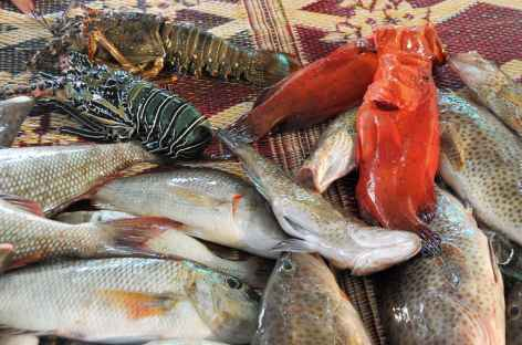 Souk aux poissons à Muttrah - Oman -