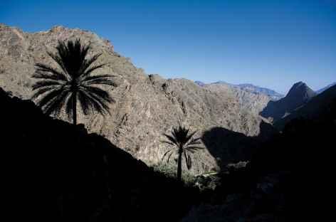 Dans les montagnes du Wadi Bani Awf - Oman -