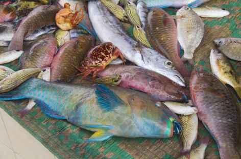 Marché aux poissons de Muttrah - Oman -