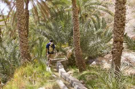 Marche sur un des nombreux falaj - Oman -