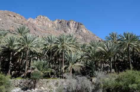 Wadi Bani Kharus - Oman -