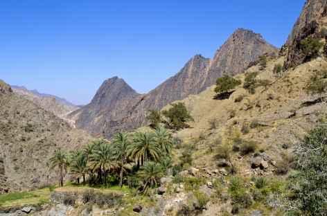 Montagnes du Hajjar Occidental - Oman -