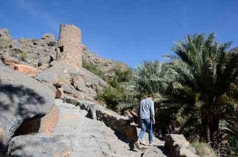 Village de montagne de Misfat Al Abreyeen - Oman -