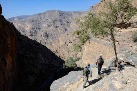 Trek vers la palmeraie de Masirat Al Jawamid, djebel Akhdar - Oman -