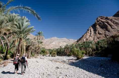Rando dans le Wadi Bani Khalid - Oman -