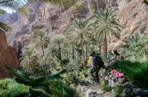 Palmeraie de Masirat Ash Shirayqiyyin - Oman -