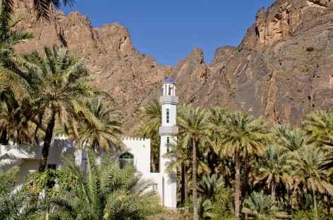 Mosquée et palmeraie dans le Wadi Bani Awf - OMan -