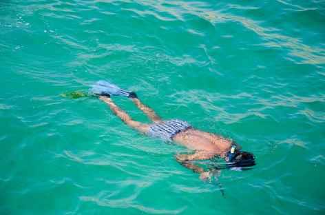 Snorkeling dans les fjords du Musandam - Oman -