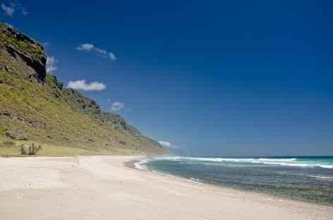 Plage magnifique de Dhlakut - Oman -