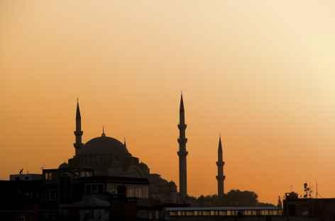 Istanbul au coucher du soleil - Turquie -