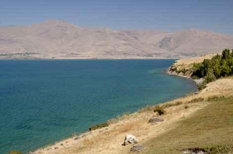 Rivages nord-est du lac de Van - Turquie -
