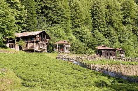 Chalets d'alpage dans les montagnes du Kackar -