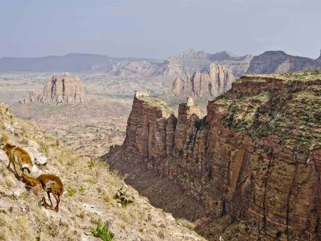 Montagnes de Gheralta (Tigray) - Ethiopie, © Julien Erster - TIRAWA