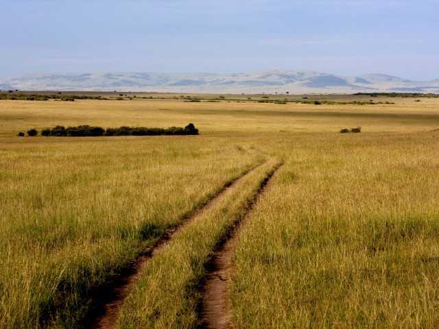 Pistes du Masai Mara - Kenya, © Julien Erster - TIRAWA
