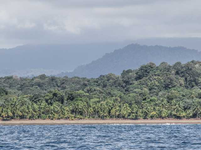 Sauvage côte Pacifique - Colombie, © Julien Freidel - Tirawa