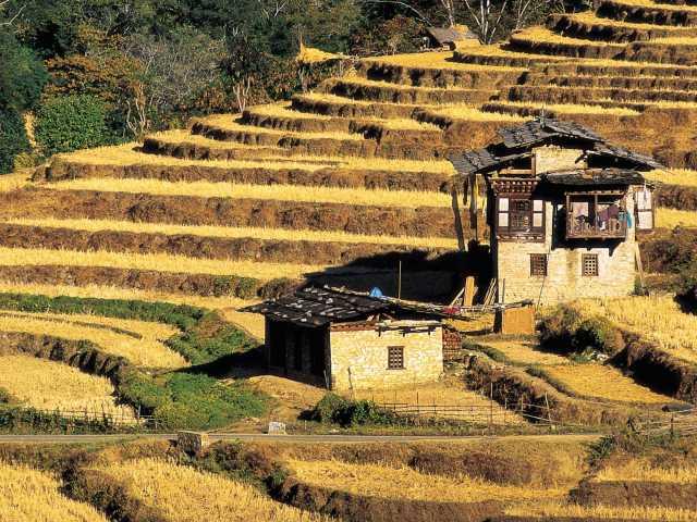 Couleurs d'automne au Bhoutan, © Robert Dompnier - TIRAWA