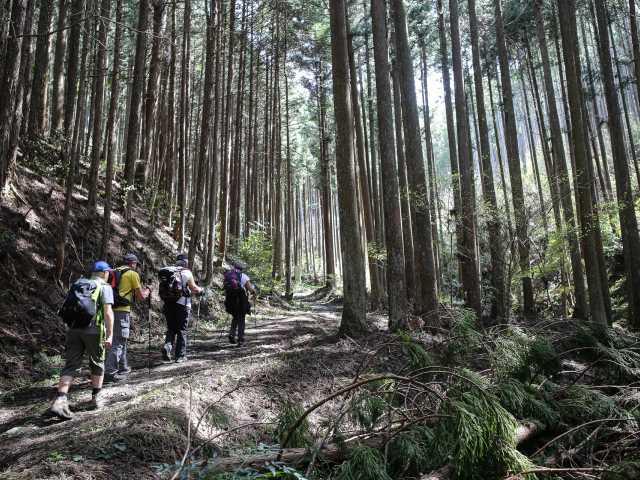 Pèlerinage Shikoku. Vers Temple 44, © Tirawa