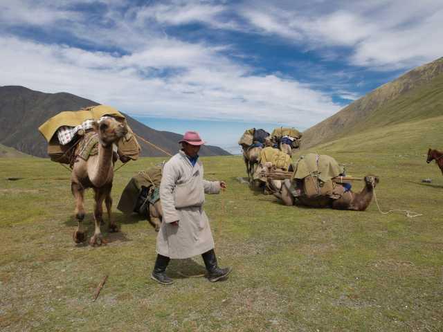Chamelier - Mongolie, © Christian Juni - Tirawa