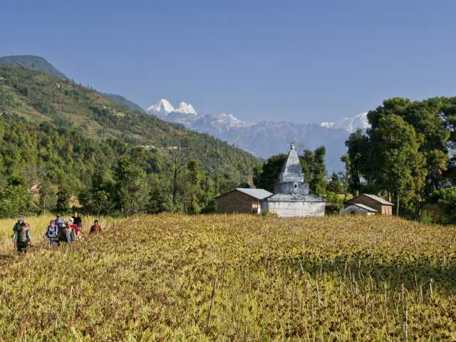 Trek dans les cultures, au loin le Ganesh Himal (Népal), © Guillaume Chenot - Tirawa