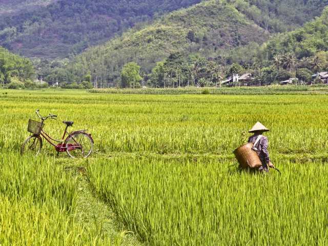 Balade dans les rizières de Mai Chau Vietnam, © Julien Freidel - Tirawa