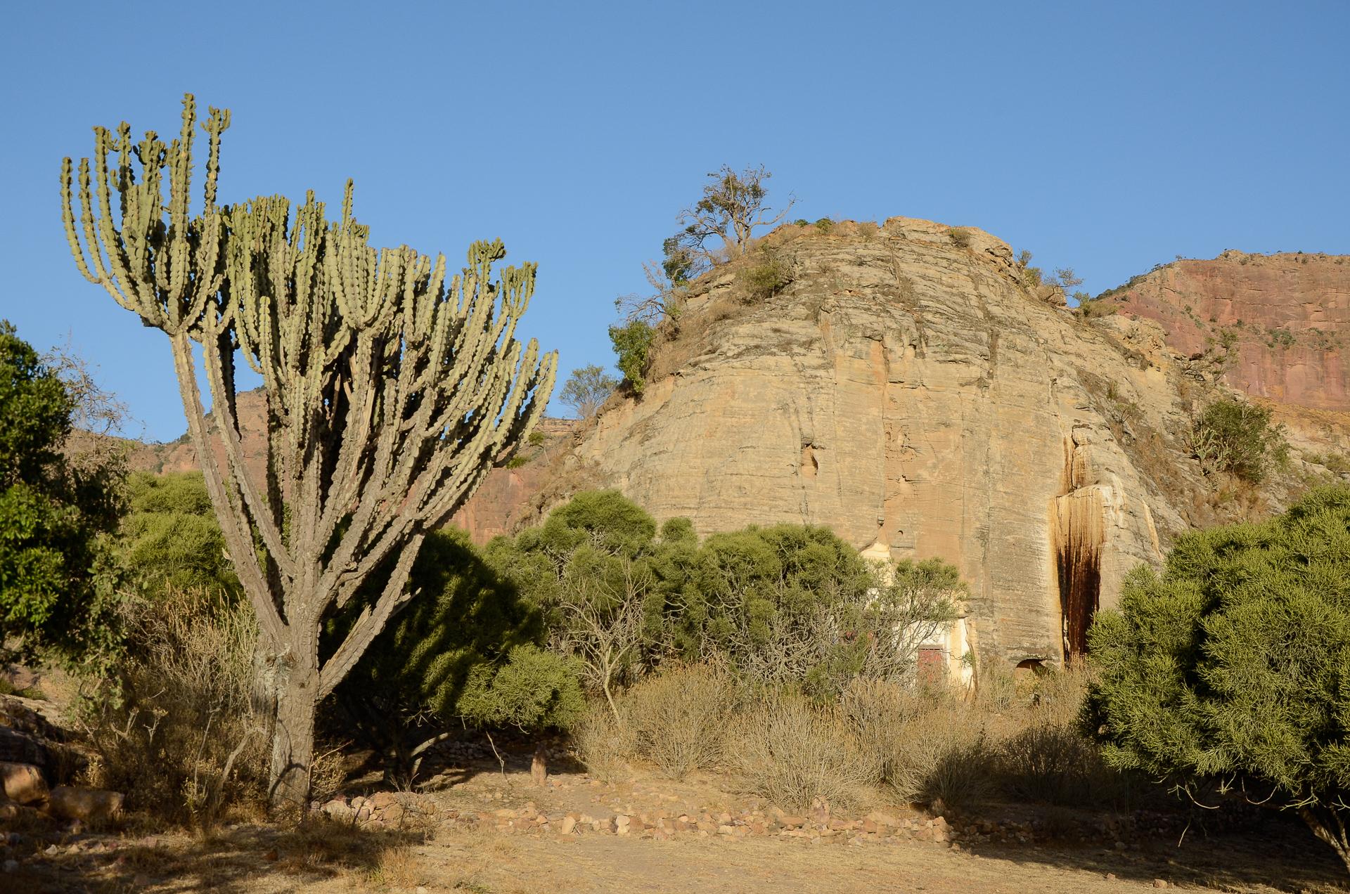 Eglise d'Abuna Gebre Mikael