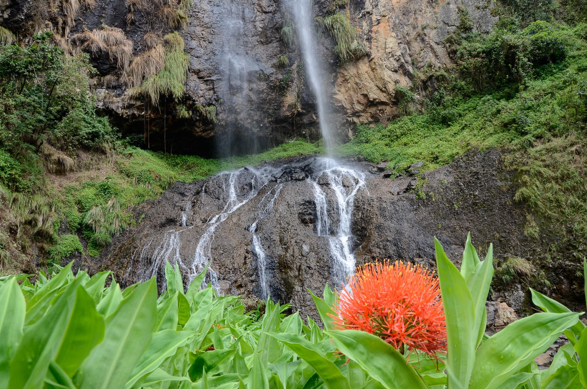 Cascade de Silisili