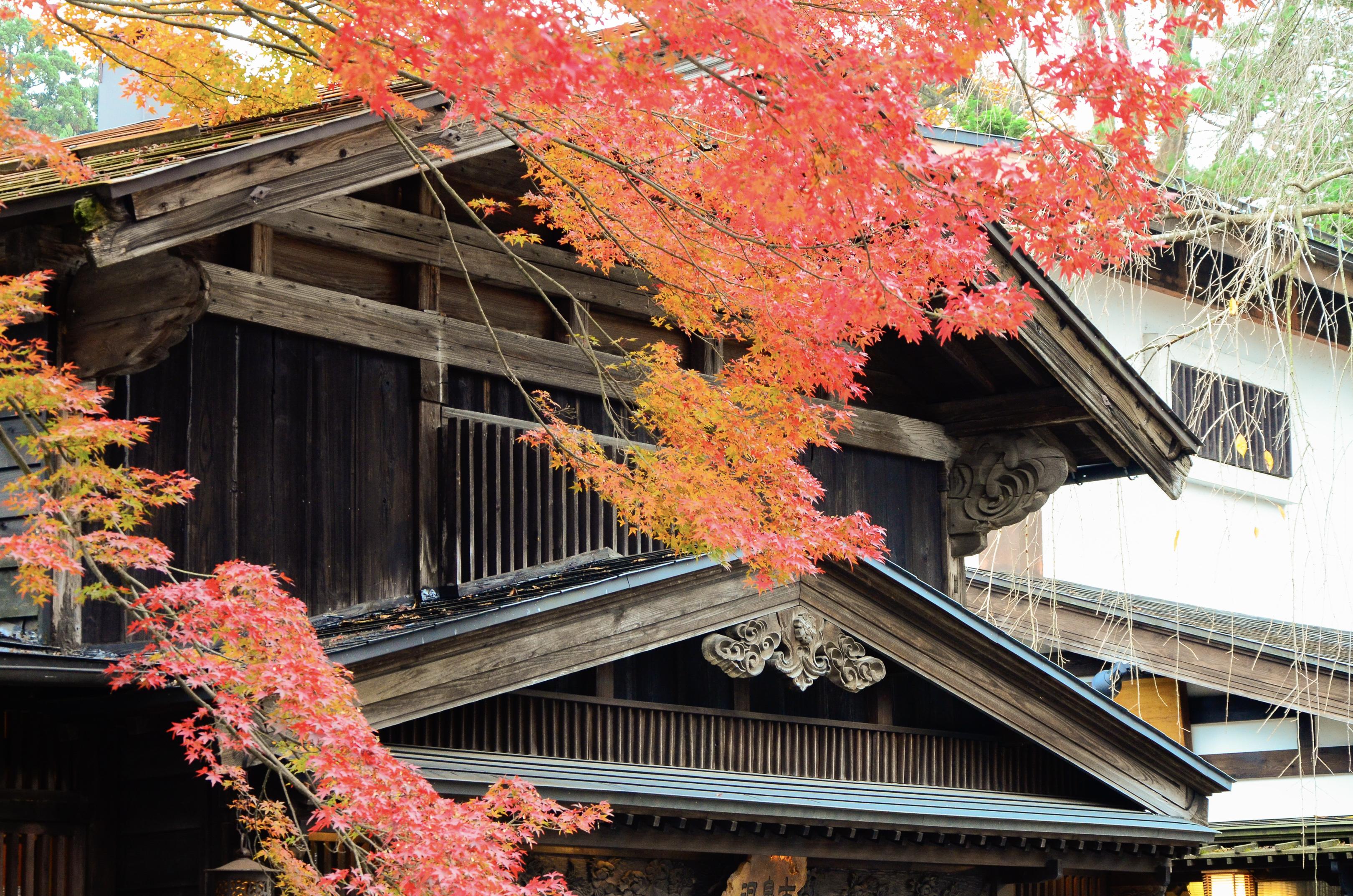 Temple flamboyant automne Japon