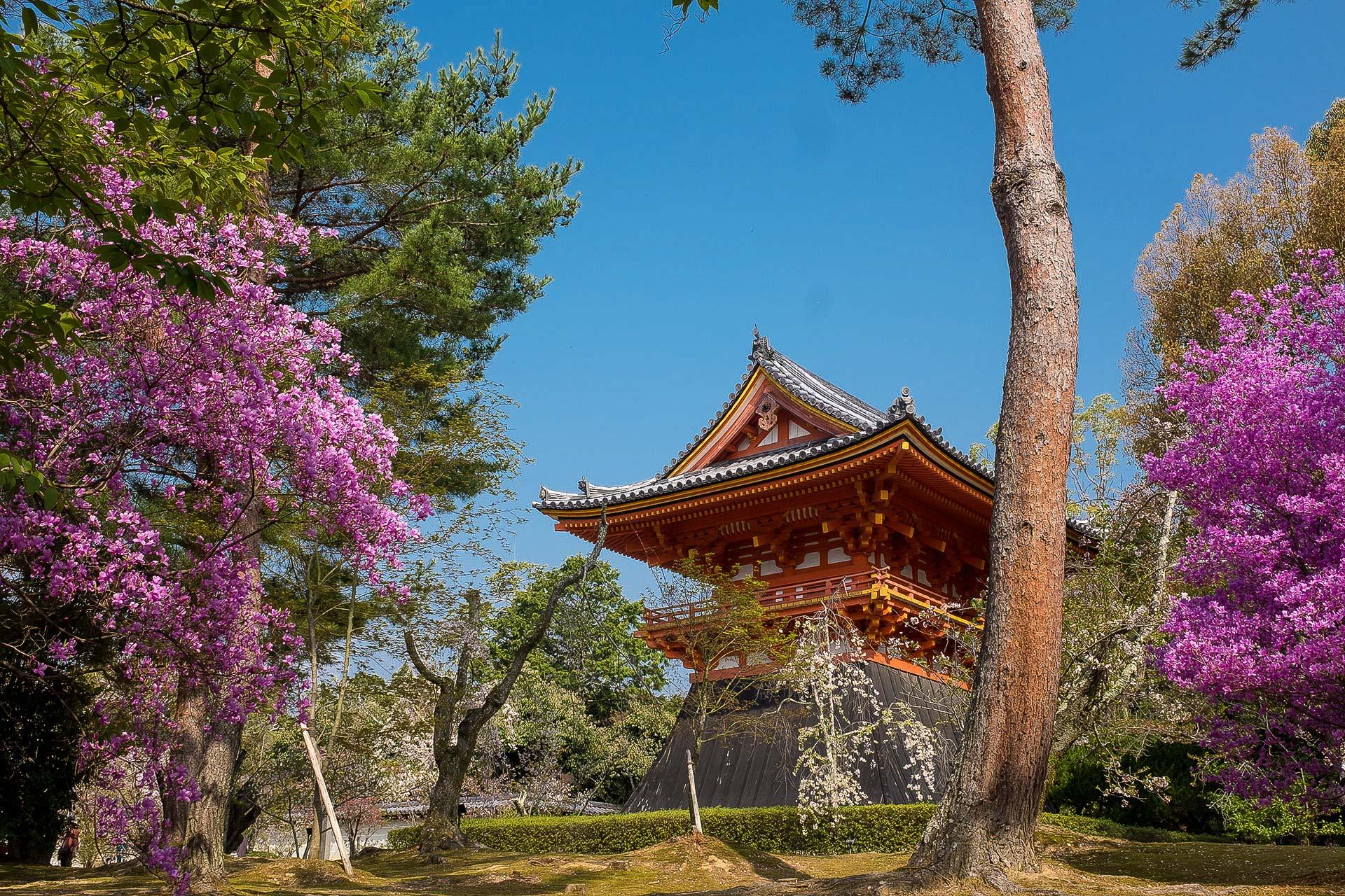 Un petit temple de Ninna-ji