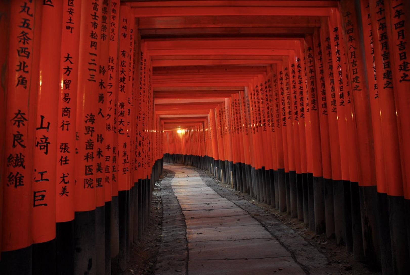 Fushimi Inari avec ses milliers de toriis