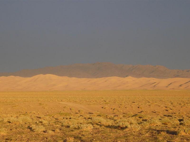 gobi mongolie