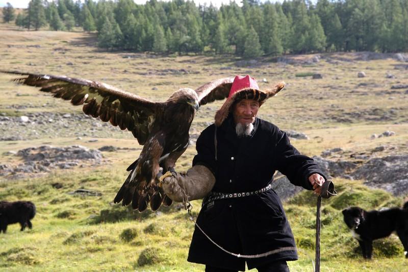 aiglier kazakhs mongolie altaï