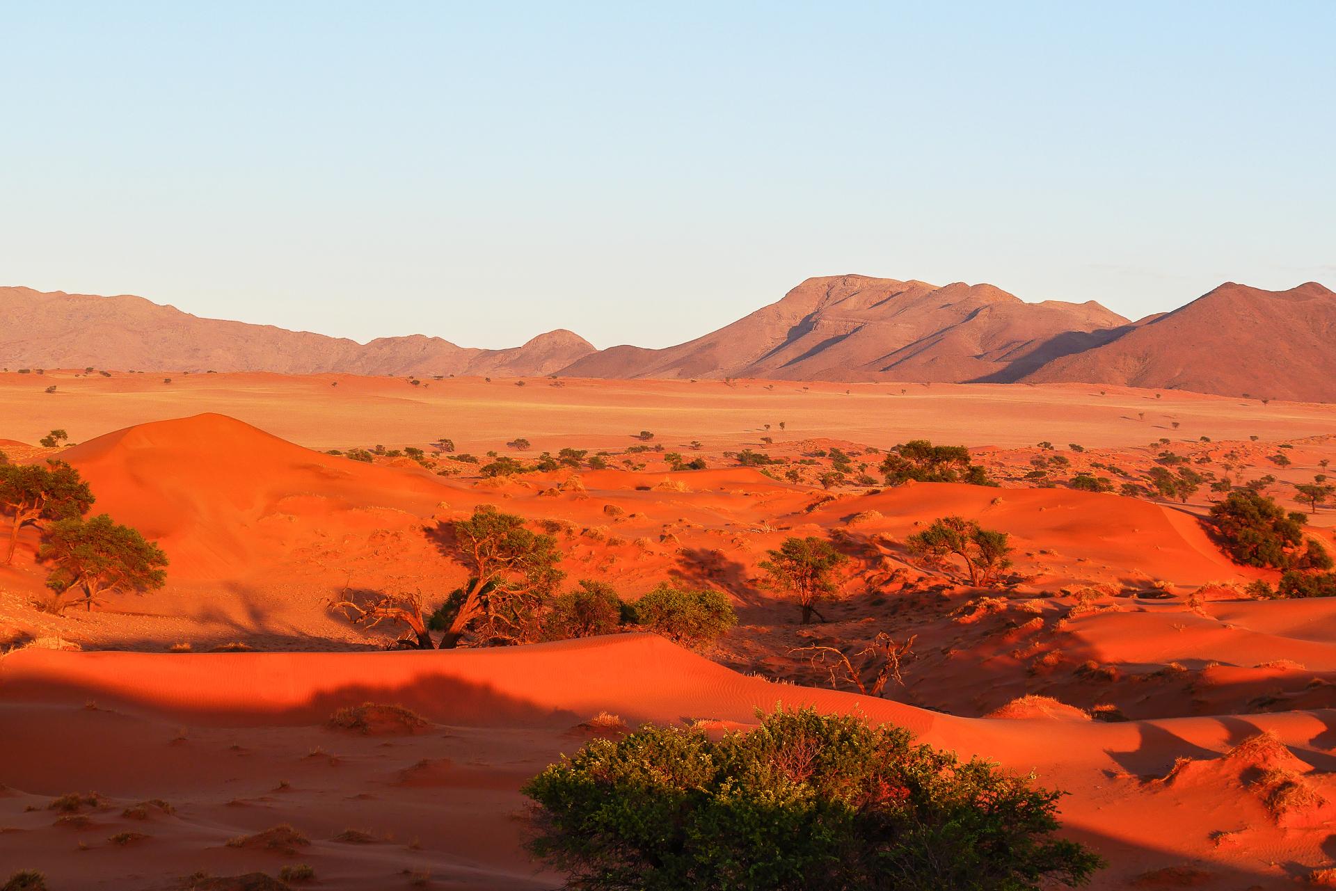 desert du Namib rand