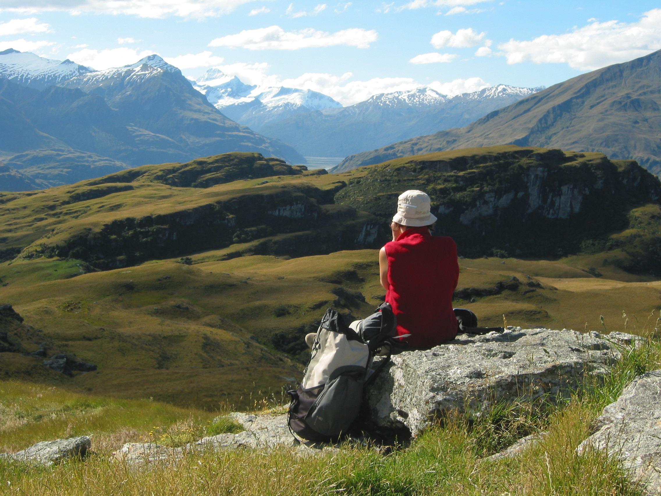 Alpes néozélandaises