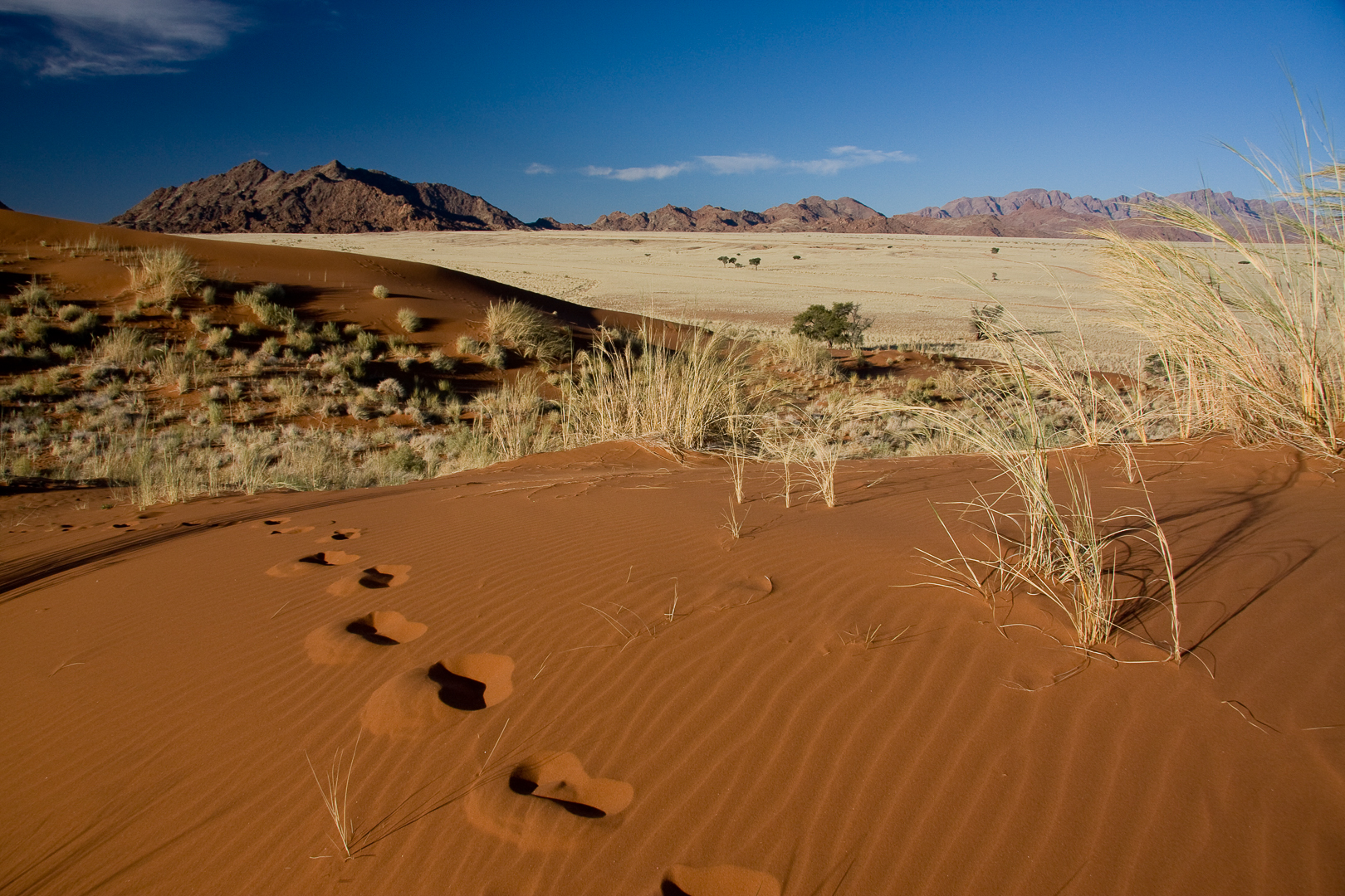 Dune Namib sossusvlei