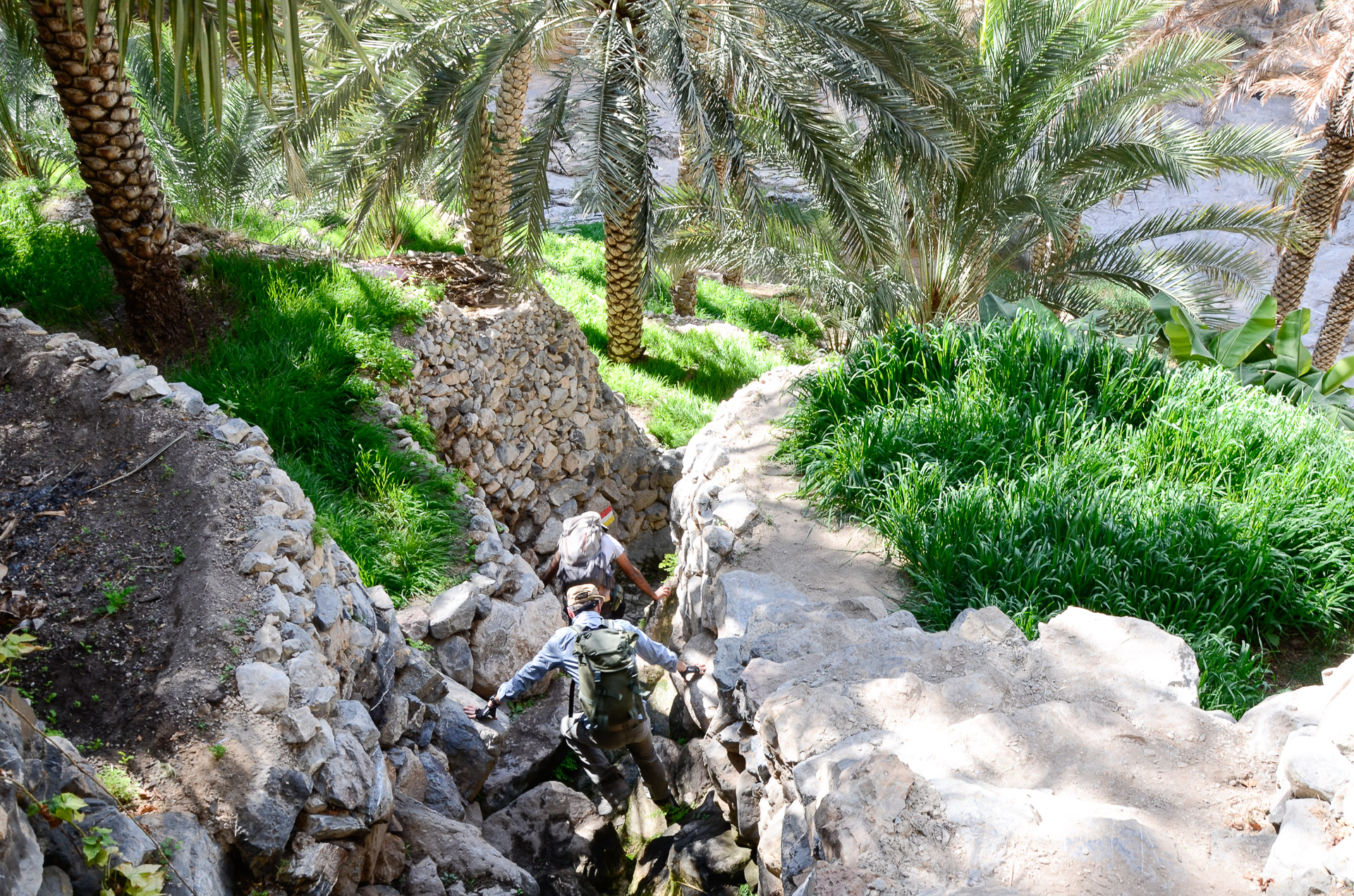 Depuis le village d'Al Hilaylat trek djebel Akhdar