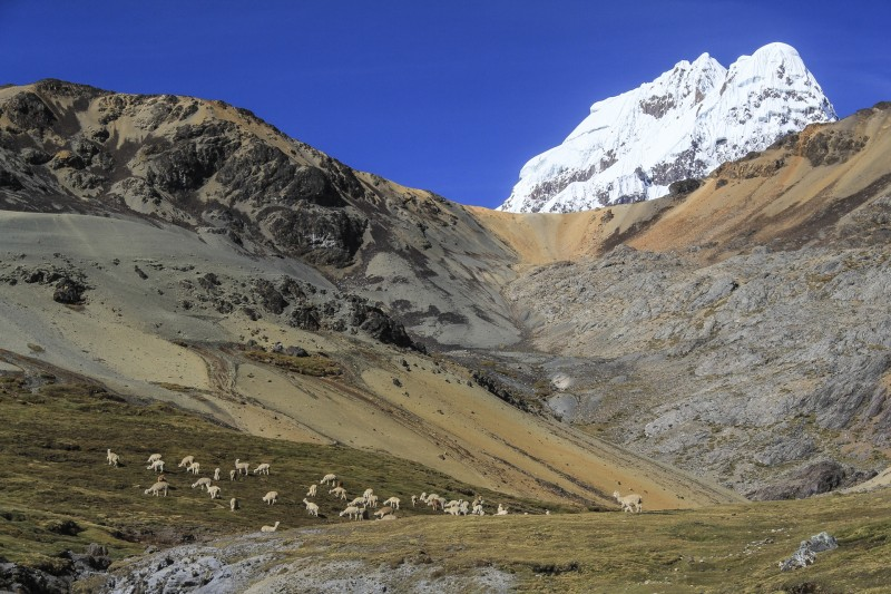 Cordillère Pérou