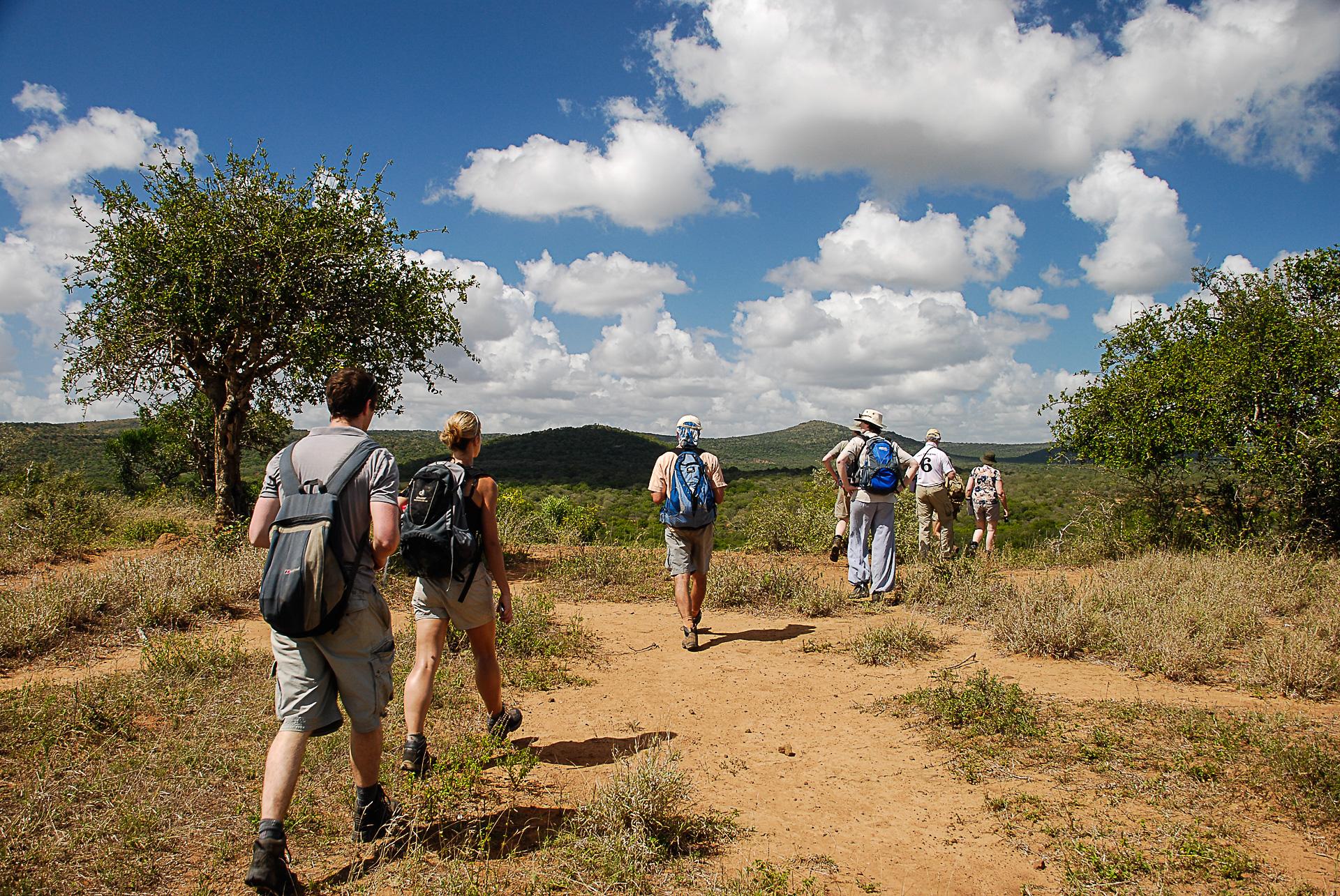 Safari à pied reserve afrique du sud