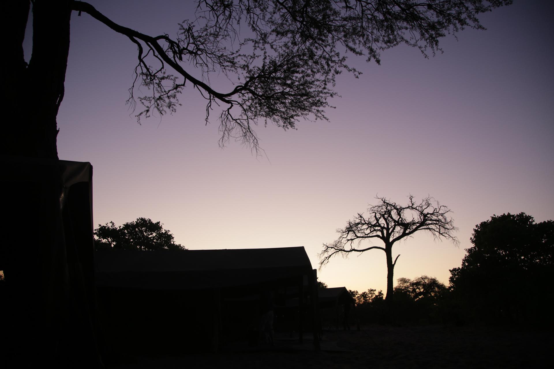 Lever soleil Savuti