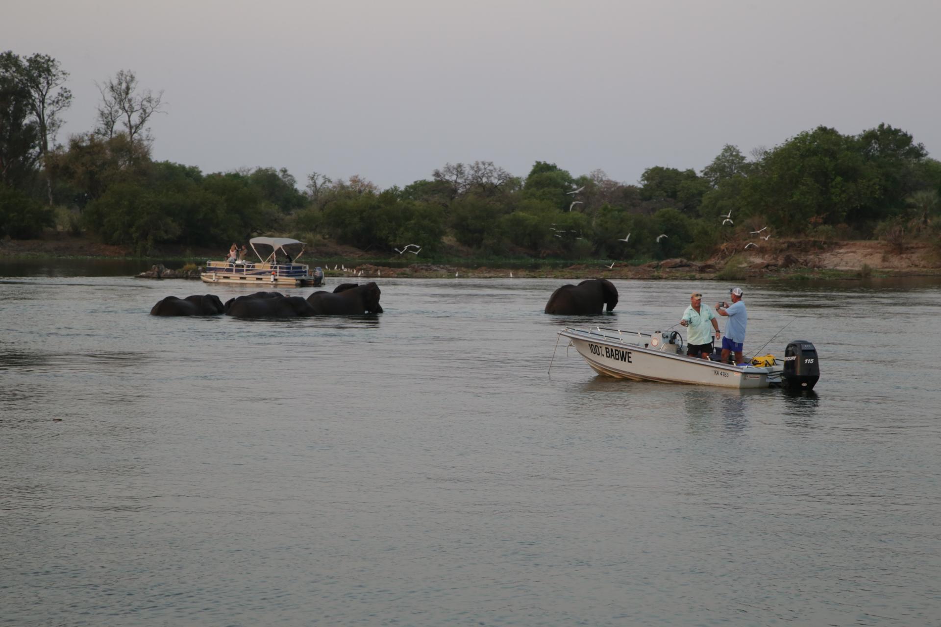 Navigation fleuve zambèze