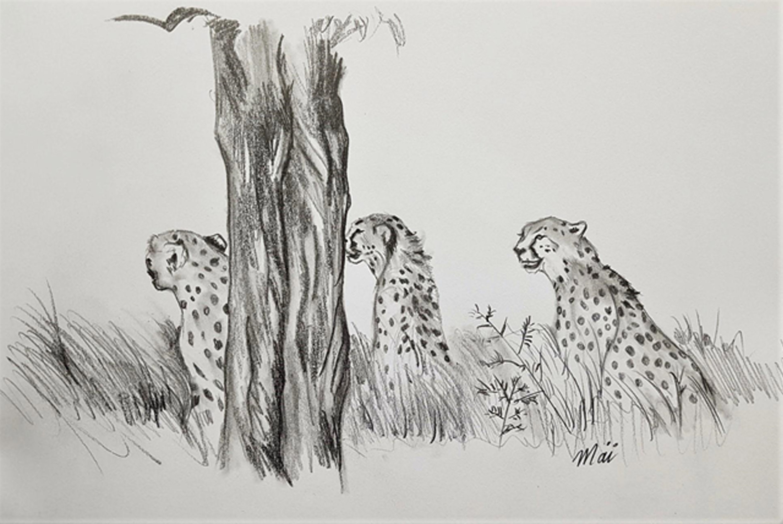 guépards